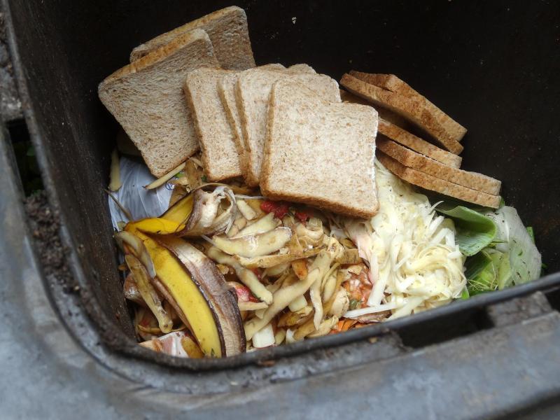 Bild zu Nicht alles muss in den Müll