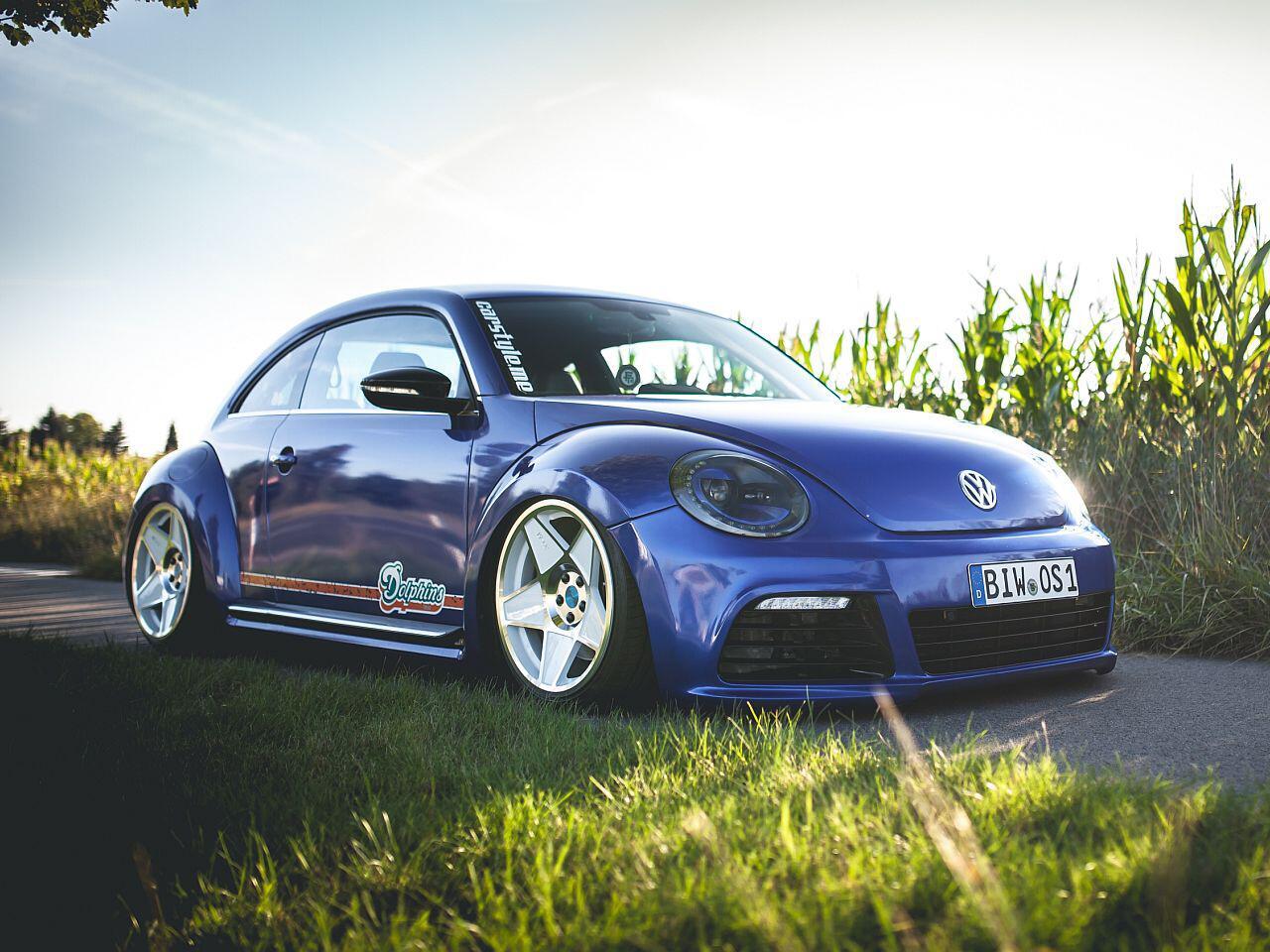 Bild zu VW Beetle von Oliver Schröder