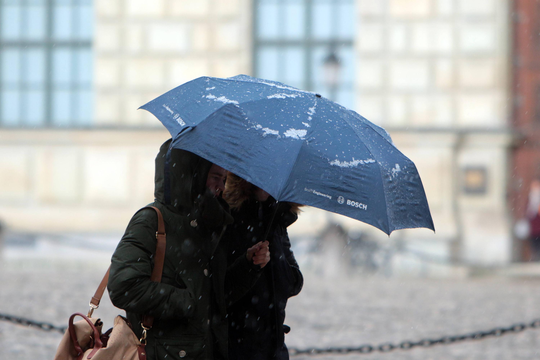 Bild zu Passanten mit Regenschirm auf der Maximilianstraße in München während eines Regenschauers