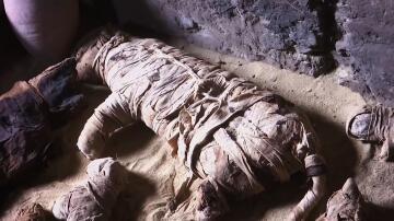 Bild zu Ägypten, Mumien, Grabkammern,