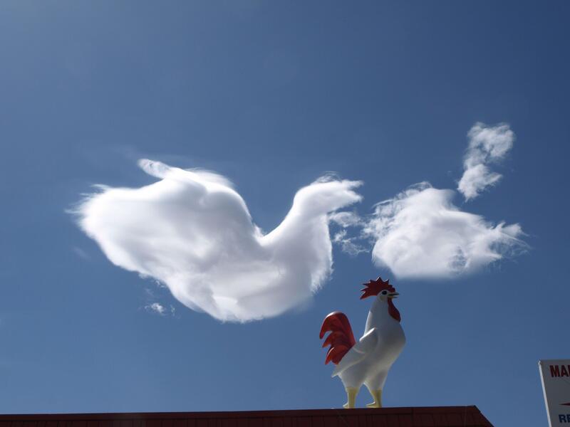 Bild zu Wolke Himmel Hahn