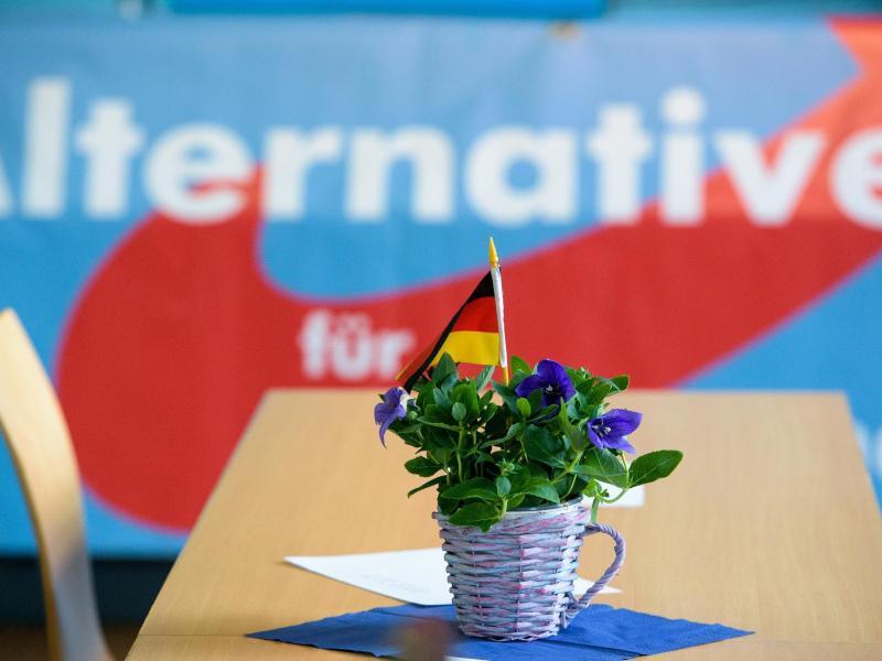 Bild zu Alternative für Deutschland