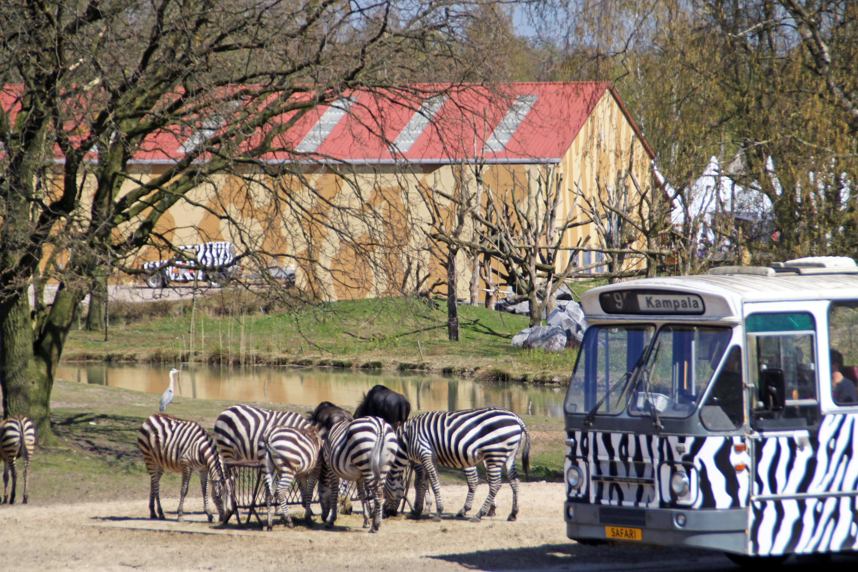 Bild zu Niederlande