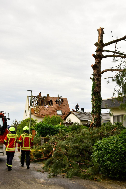 Tornado in Rhineland-Palatinate?