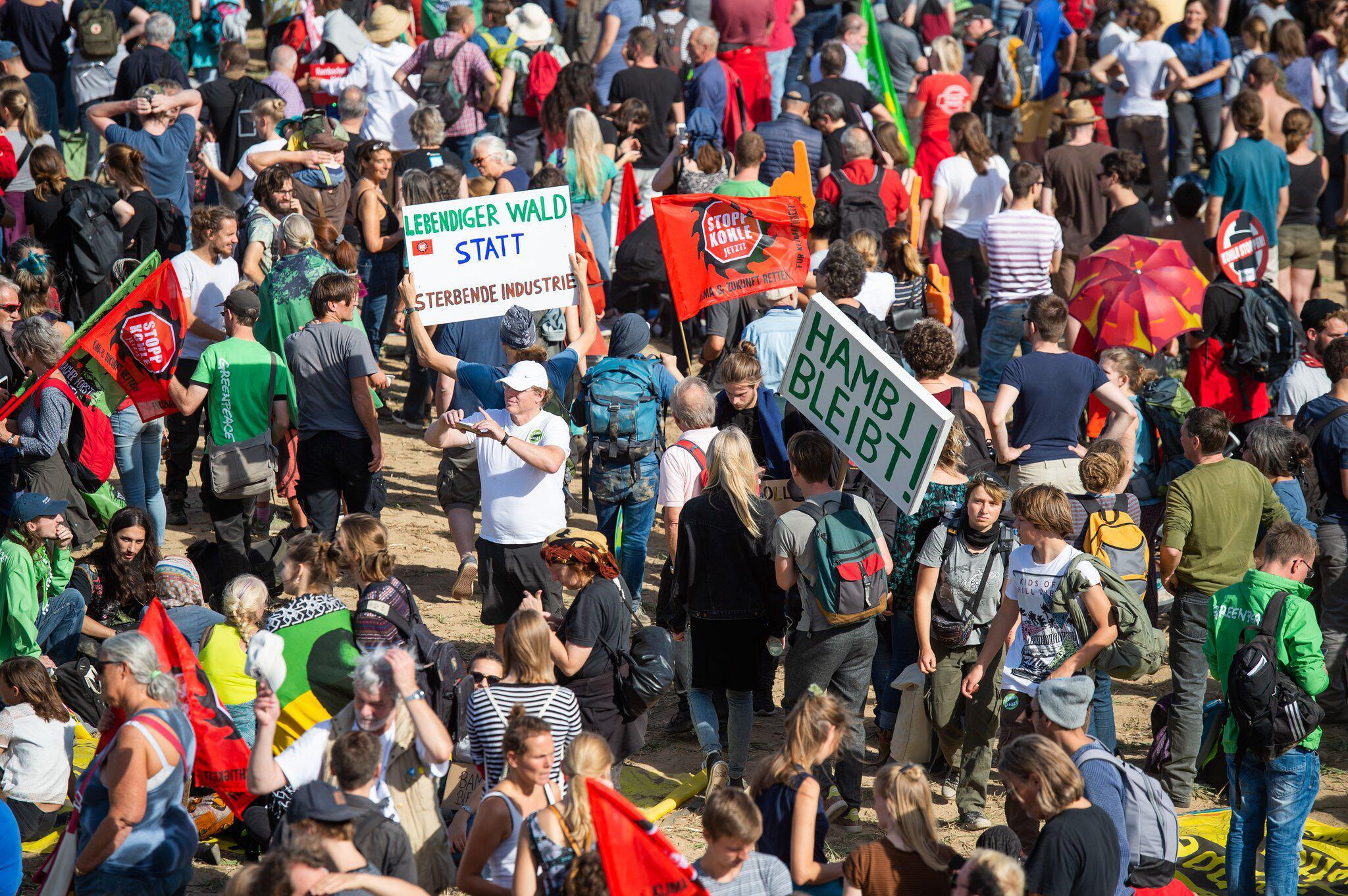 Bild zu Hambacher Forst - Demonstration