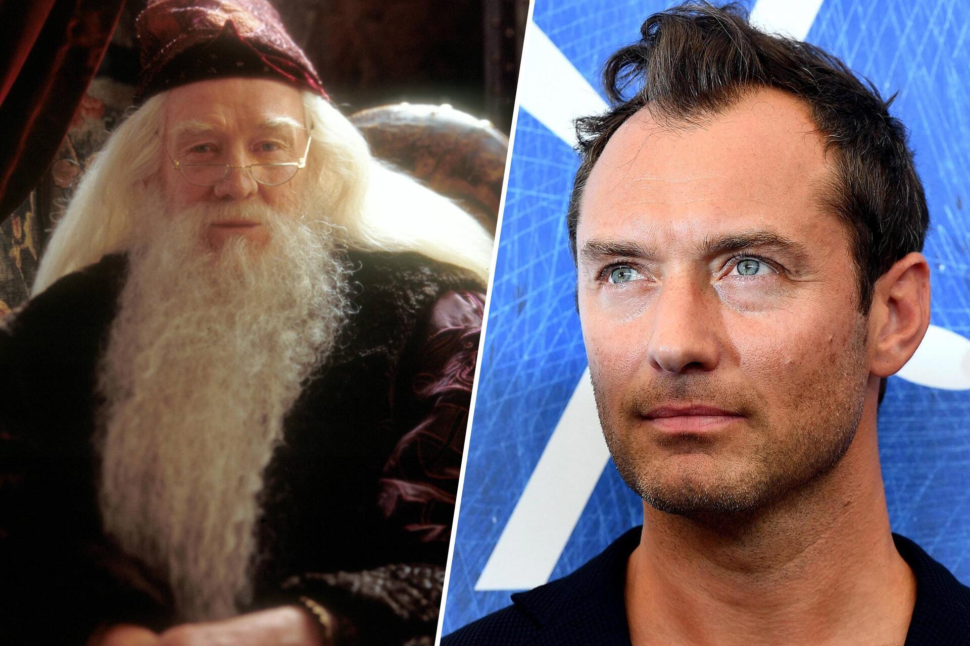Bild zu Jude Law, Harry Potter, Phantastische Tierwesen und wo sie zu finden sind, Albus Dumbledor