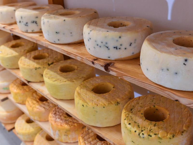 Bild zu Käselaibe im Regal