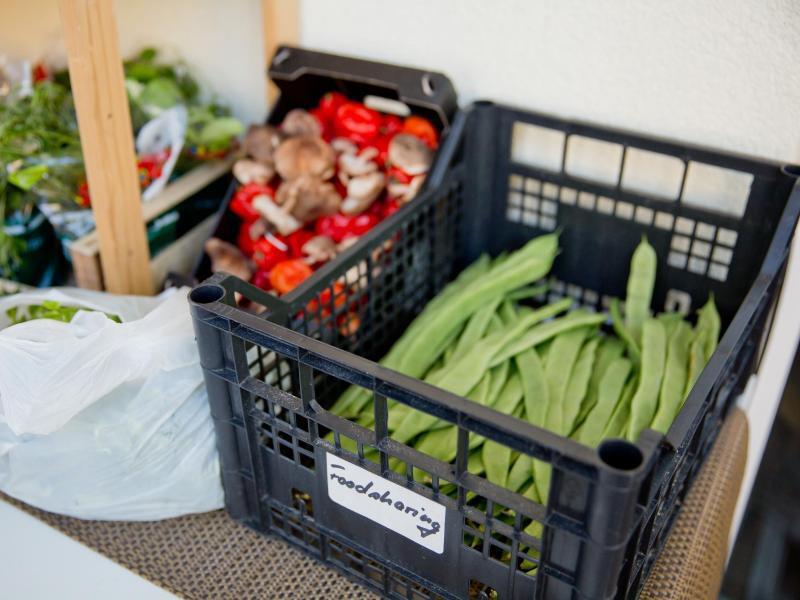 Bild zu Foodsharing - Food-Saver