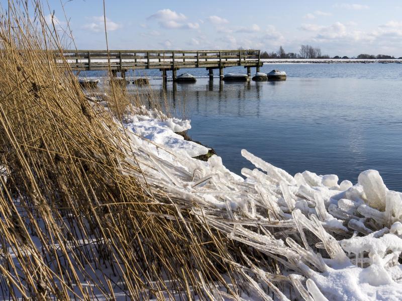 Bild zu Winterstimmung