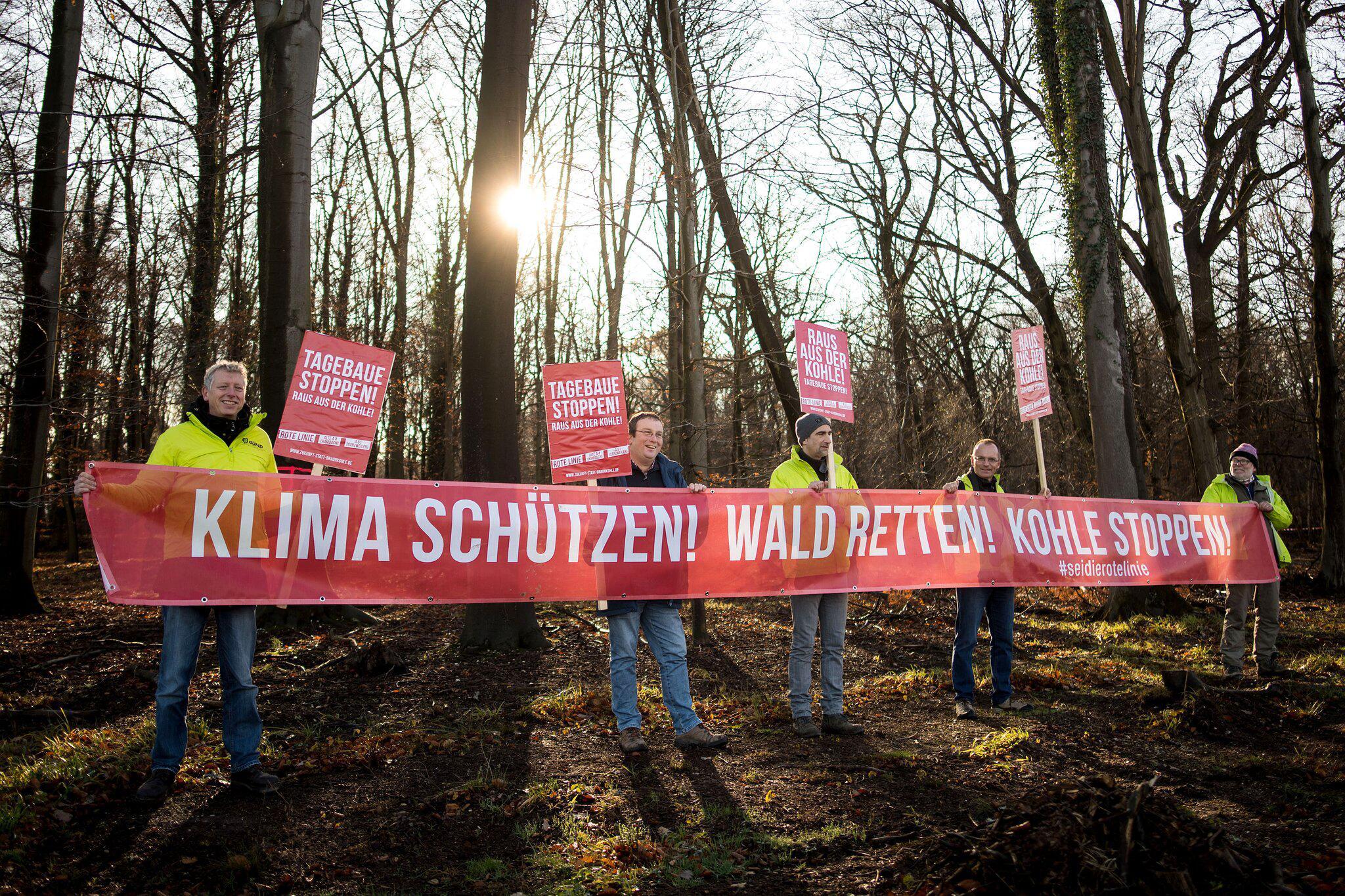 Bild zu Hambacher Forst