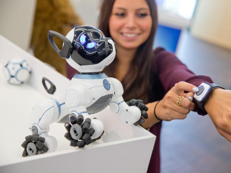 Bild zu Roboterhund CHIP