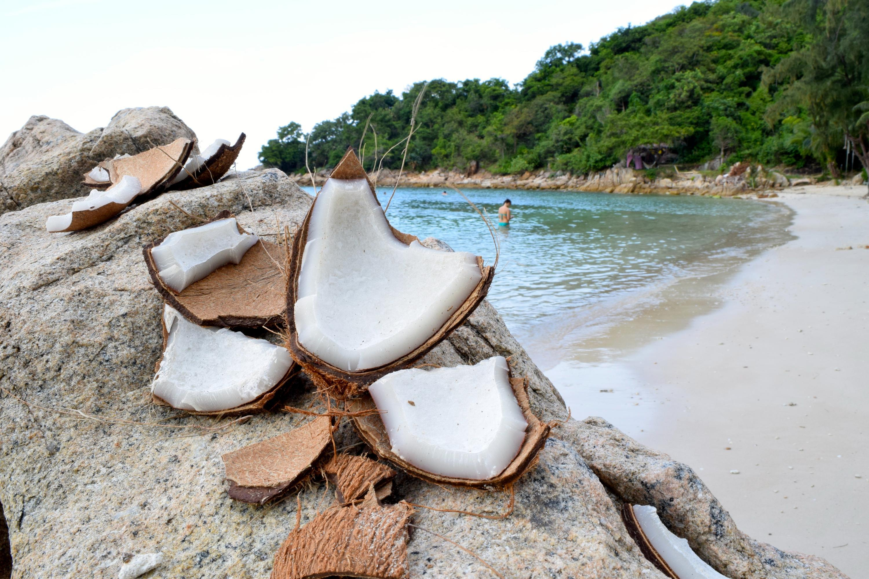 Bild zu Aufgeschlagene Kokosnüsse am Coconut Beach in Koh Phangan