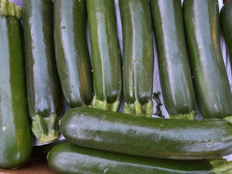 Bild zu Beliebte Zucchini