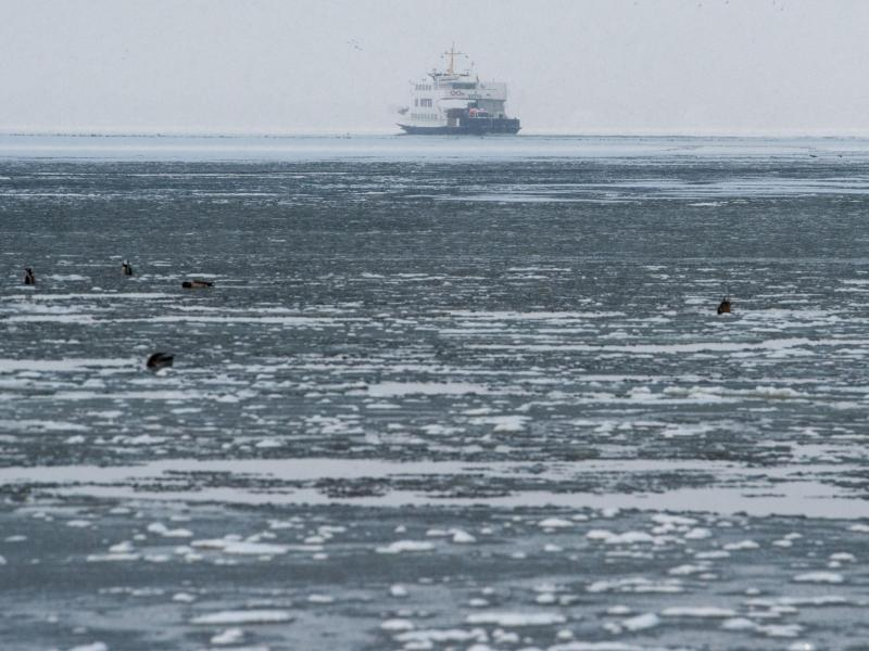Bild zu Eisbrecher an der Ostsee