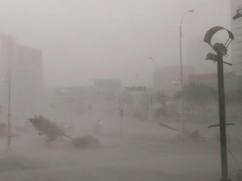 Bild zu Im Taifun