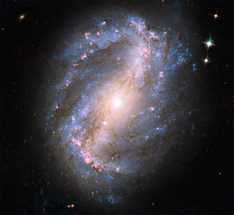 Bild zu Spiral-Galaxie NGC 6217