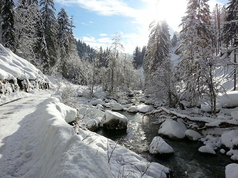 Bild zu Schnee an der Valepp am Spitzingsee
