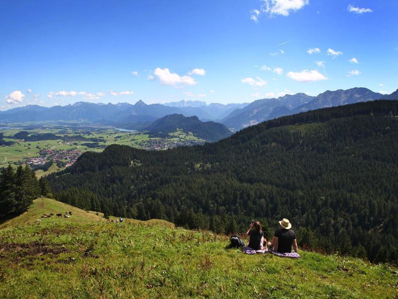 Bild zu Bergwanderer