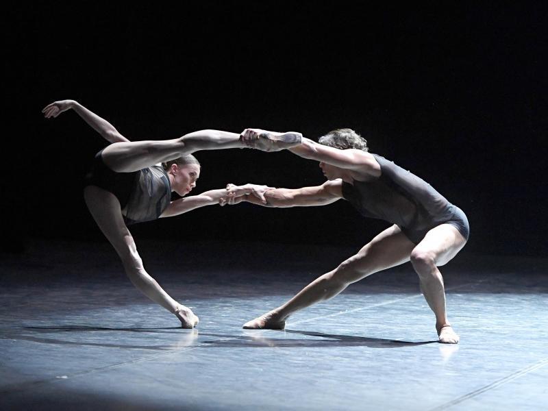 Bild zu Gala 20 Jahre Ballettdirektor Reid Anderson