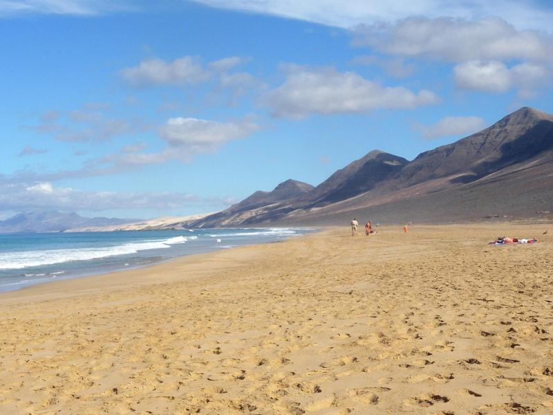 Bild zu Fuerteventura