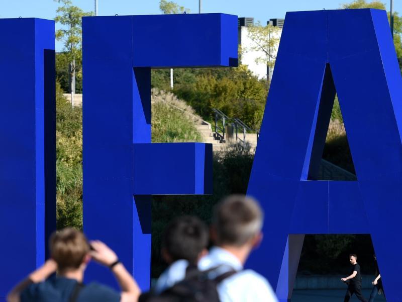 Bild zu IFA-Aufsteller