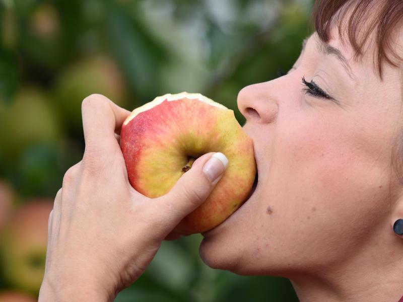 Bild zu Verzehr eines Apfels