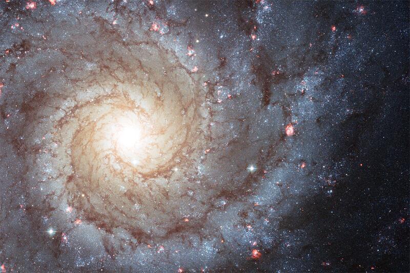 Bild zu Spiral-Galaxie Messier 74