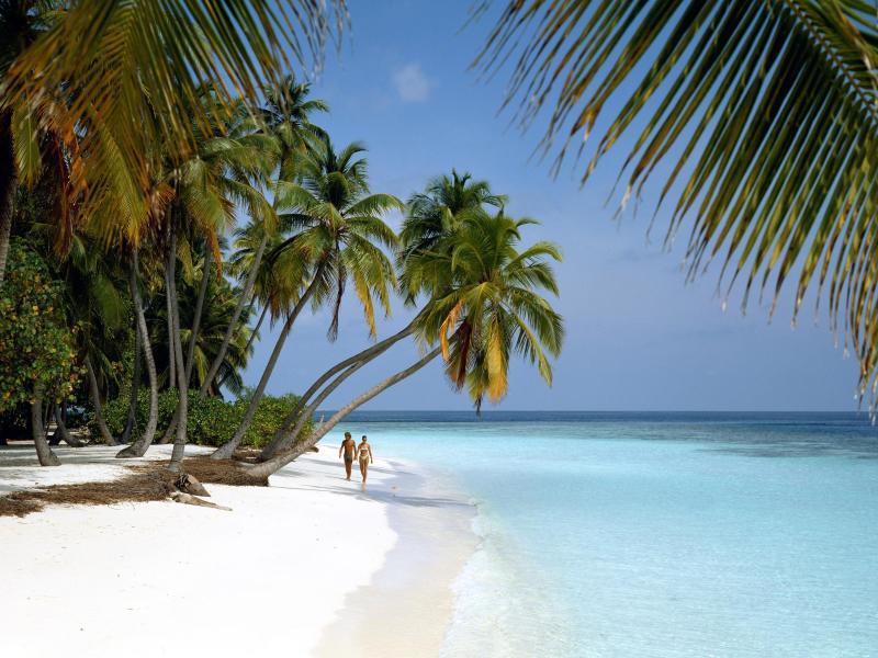 Bild zu Malediven