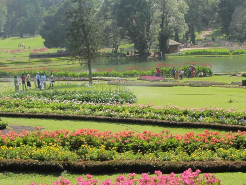 Bild zu Kandawgyi Garten
