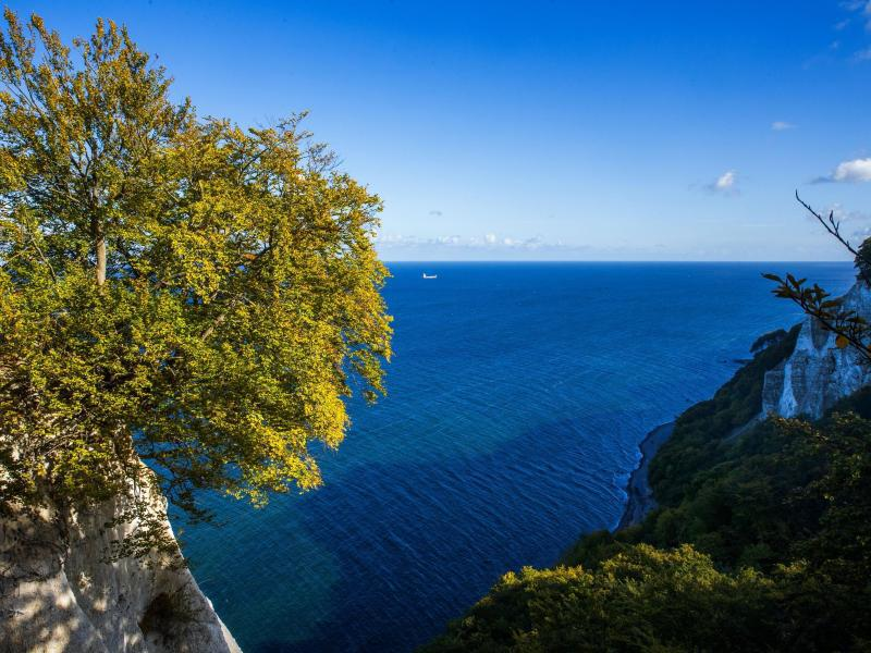 Bild zu Kreidefelsen und Nationalpark Jasmund