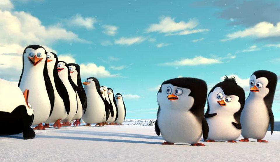 Bild zu Die Pinguine aus Madagaskar