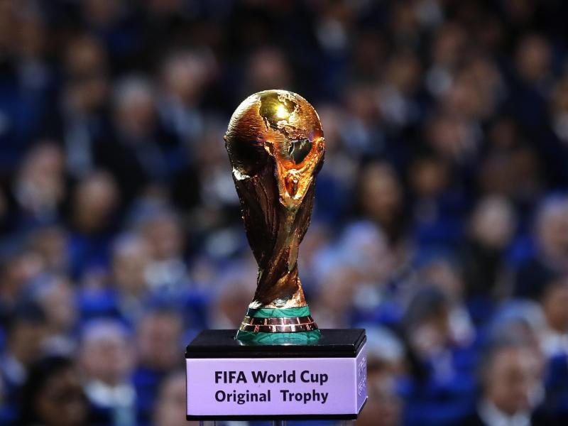 Bild zu WM-Trophäe