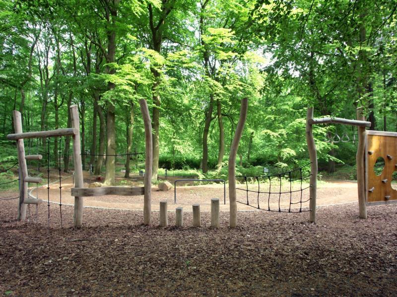 Bild zu Kur- und Heilwald auf Usedom