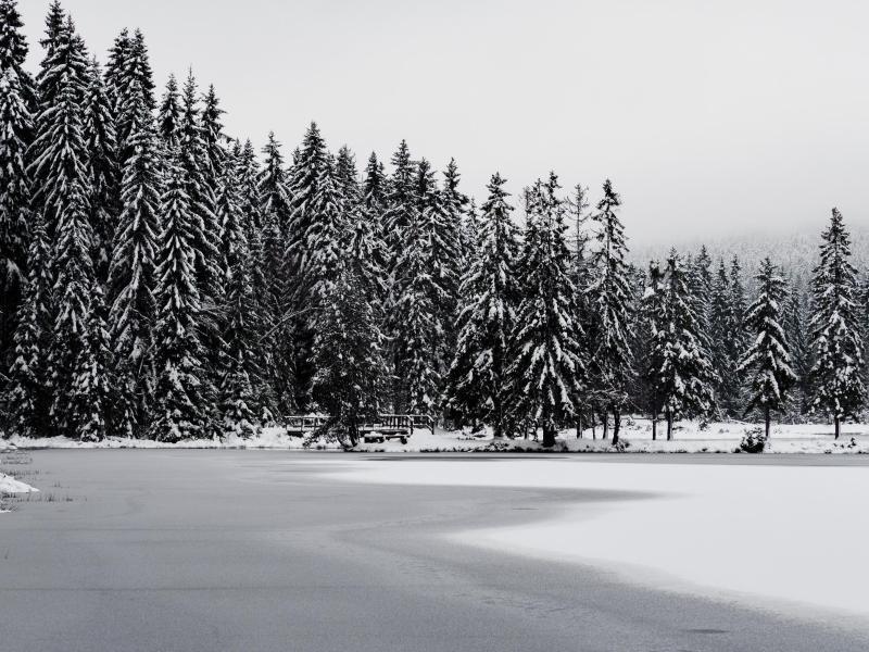 Bild zu Winterlandschaft