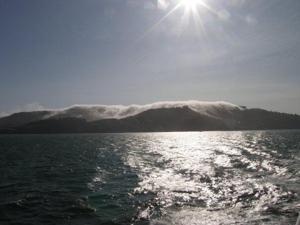 Bild zu Sausalito / USA