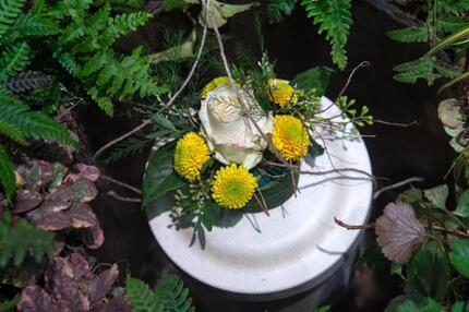 mini sorten und schwachw chsige pflanzen f rs urnengrab. Black Bedroom Furniture Sets. Home Design Ideas