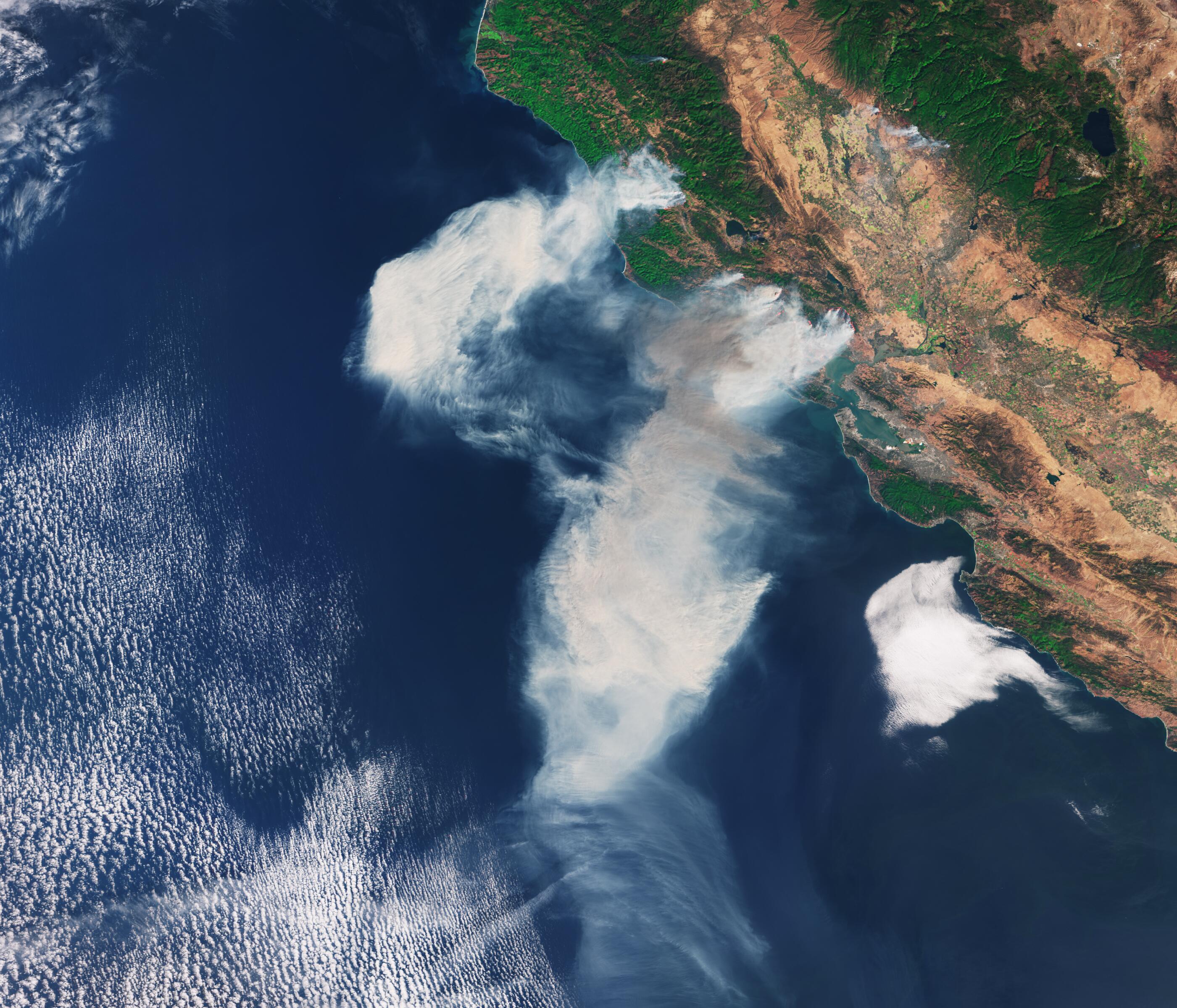 Bild zu Waldbrände