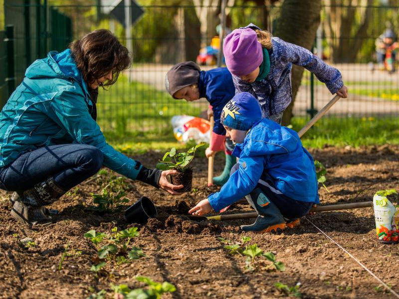 Bild zu Kinder und eine Erwachsene bei der Gartenarbeit