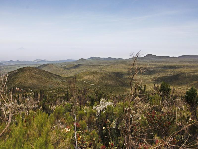 Bild zu Kilimajaro Lemosho Trek in Tansania
