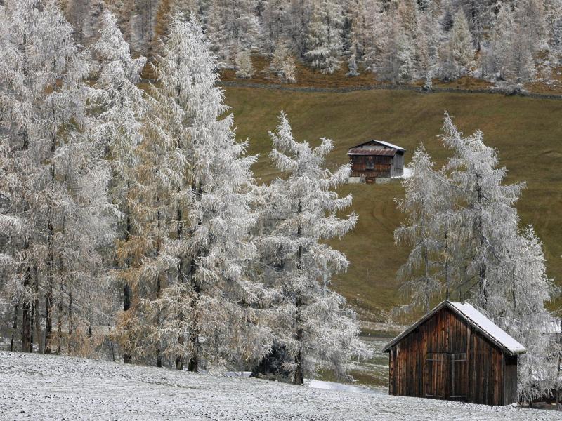 Bild zu Davos in der Schweiz