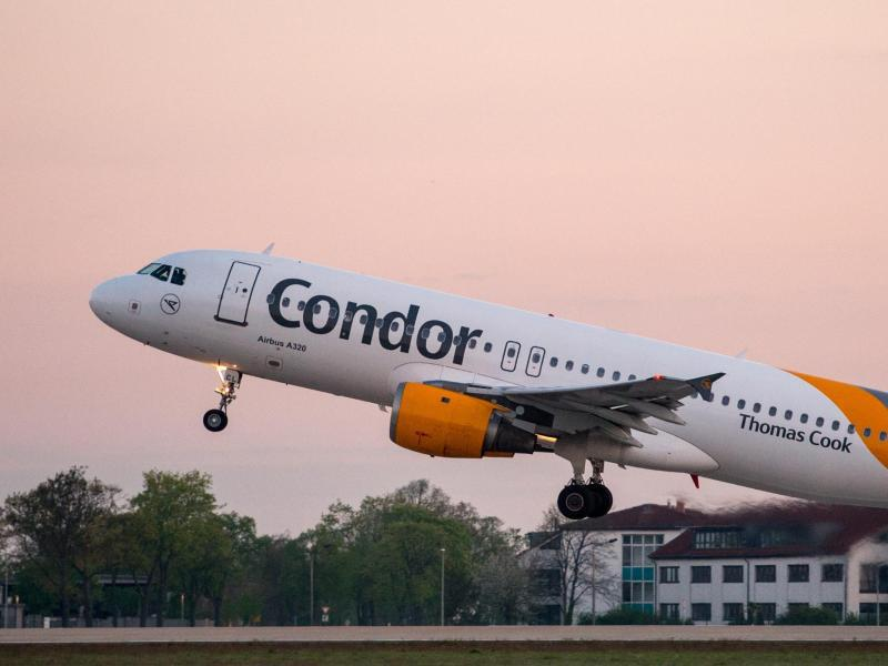 Bild zu Condor-Flugzeug