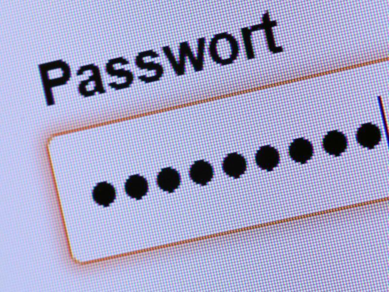 Bild zu Passwortanzeige-Feld