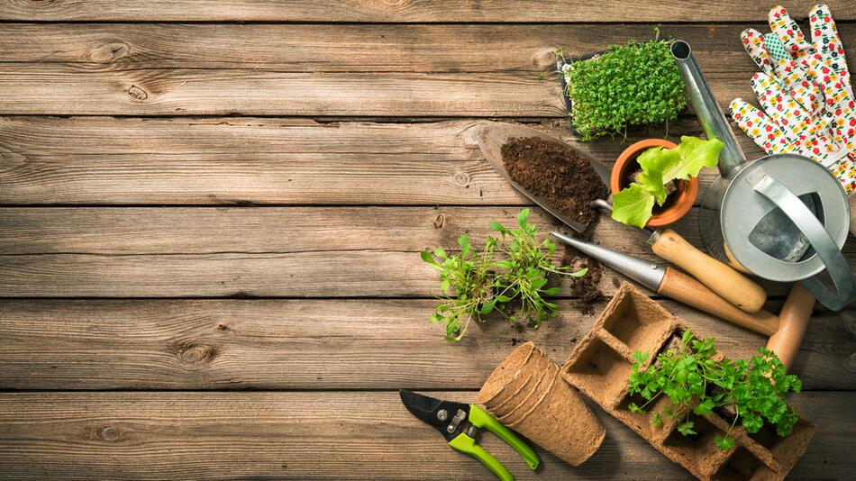 Garten, Anbau, Blumen, Pflanzen, Beet, Balkon, Kompost, Hilfsmittel, Erde, Natur