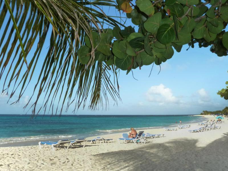 Bild zu Anguilla: Kurze Wege zum Strand