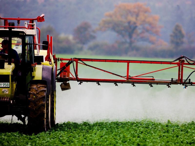 Bild zu Landwirtschaft