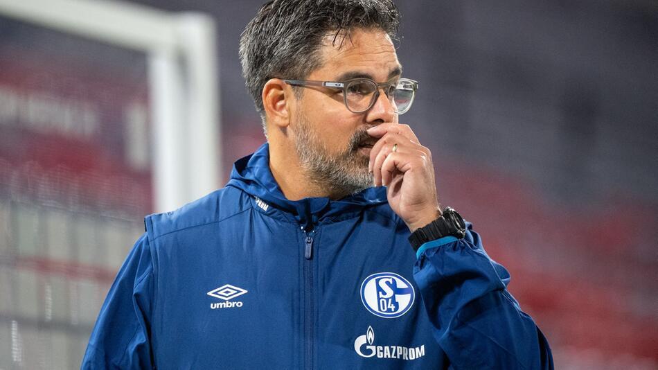 Trainer David Wagner