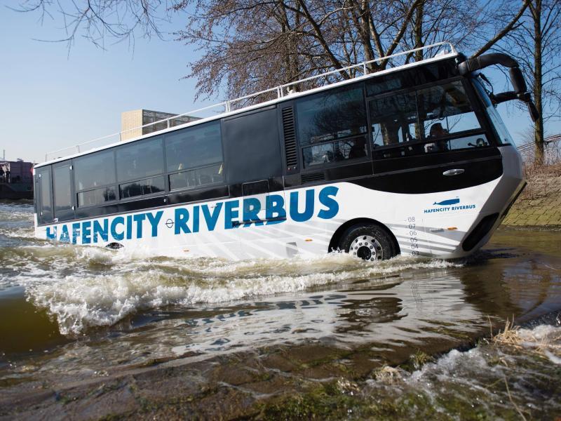 Bild zu «HafenCity Riverbus»