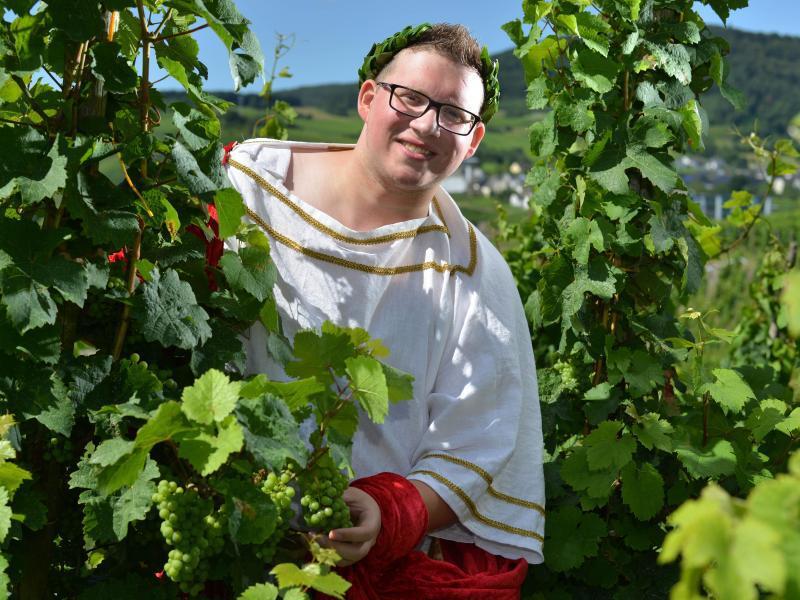 Bild zu Der Weinkönig von Kesten