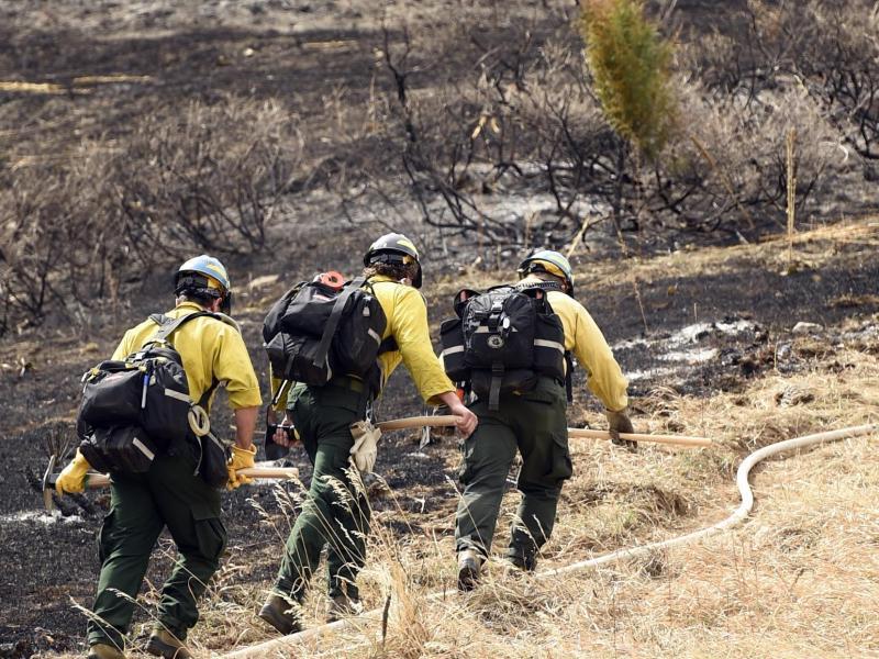 Bild zu Feuerwehrleute