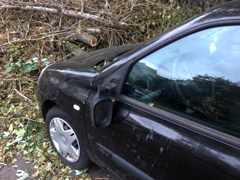 Bild zu Sturmschäden am Auto